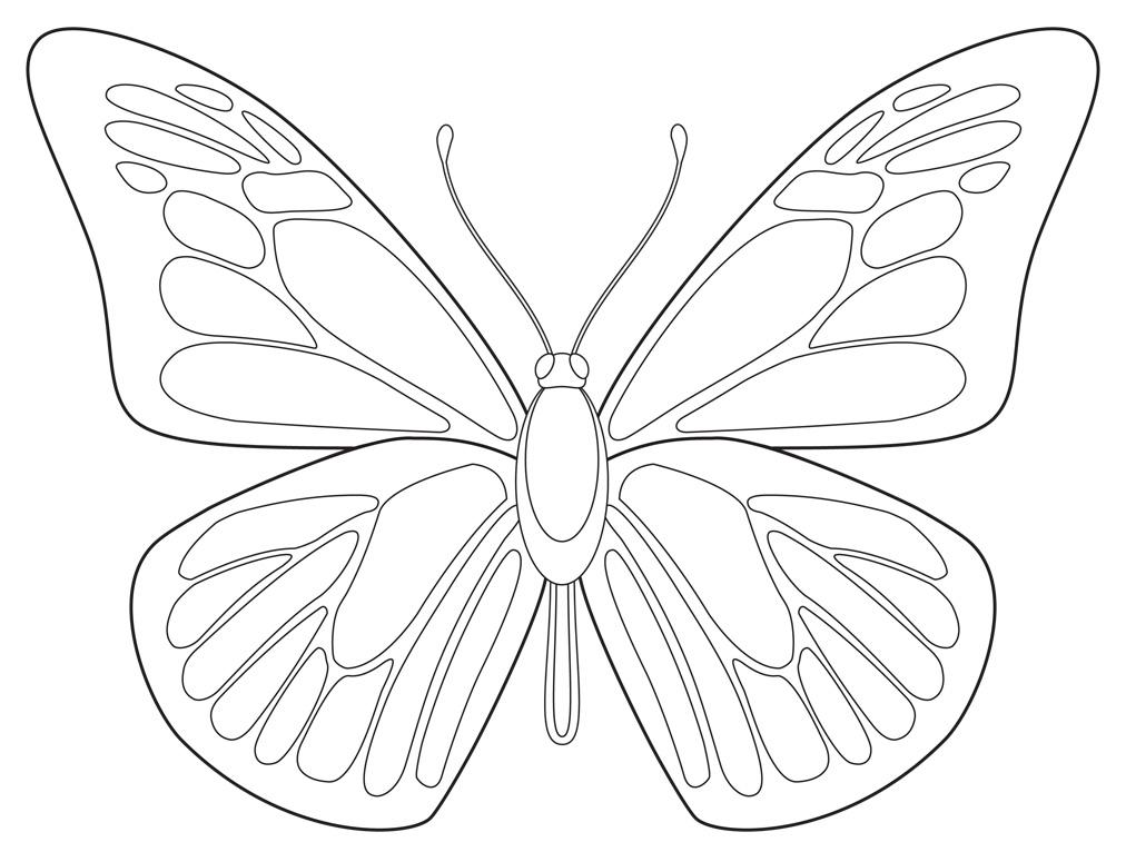 Kleurplaten Vlinder Maskers.Vlinder Kleurplaten